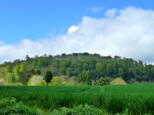 Stoner Hill