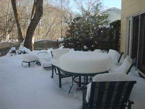 Snowstorm - December 2009