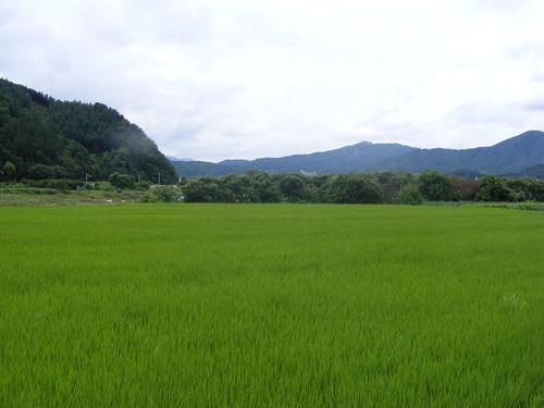 2008_0817Korea20012