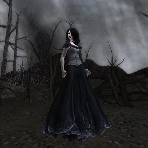 Flora - Black Dahlia II