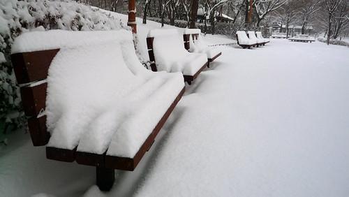 Snowy day in Seoul