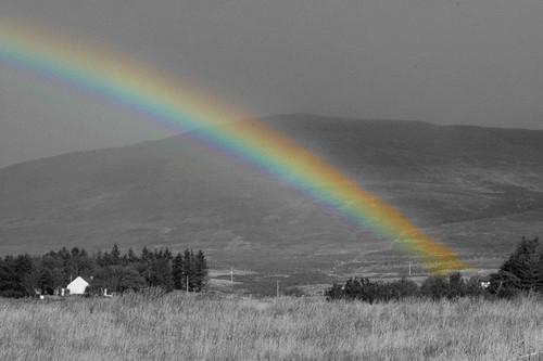 colorsplash rainbow
