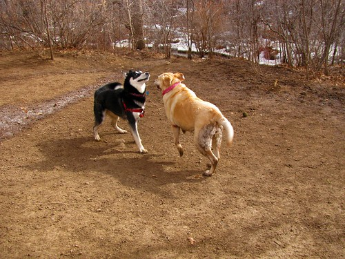 Sadie and a friend
