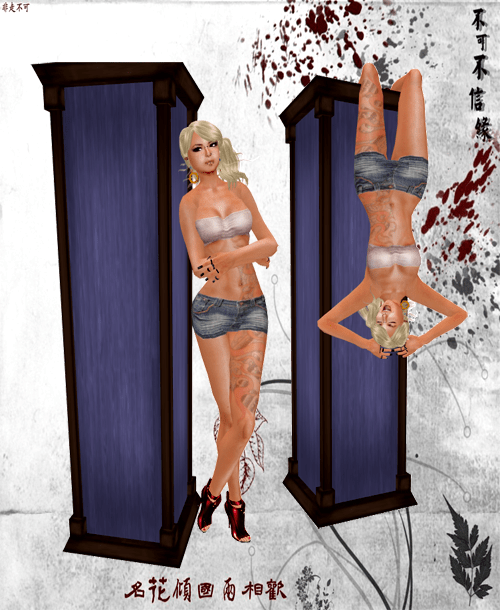 NEW! aDORKable Poses: Reflection