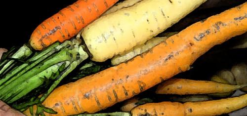carrots-fresco