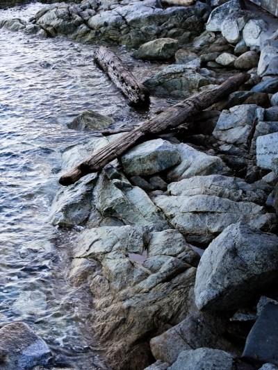 Sidney Shoreline 2