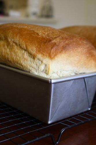 KAF White Sandwich Bread