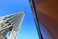 Tokyo Sky Tree under construction / 東京スカイツリー建設...