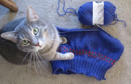 A4A Ravelympics Sweater1e.JPG