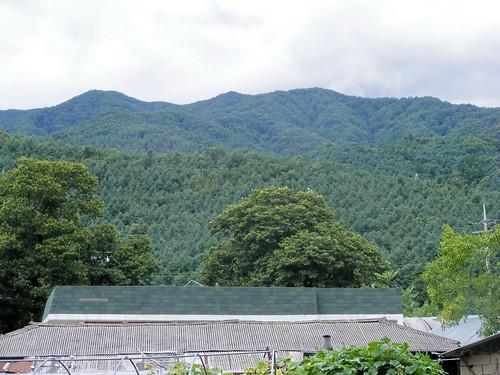 2008_0817Korea20037