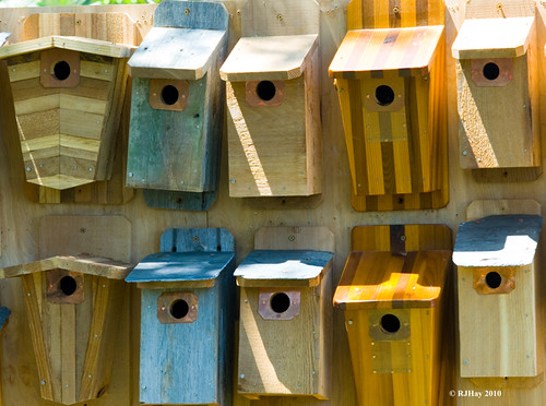 Bird Houses for sale - City Park - New Orleans