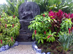 How to create a lovely peaceful feng shui style garden.  Great example of the use of contrasts, red & green leaves against the beautiful charcoal statue. This photo was taken at Crystal Castle in Byron Bay.