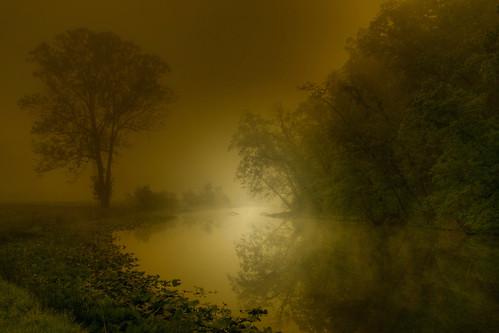 Misty Dawn of Spring
