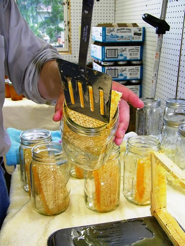 Placing honeycomb in a jar