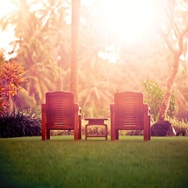 Summer / Sunset / Photography
