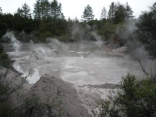 Volcanic Mud Pool, Rotorua