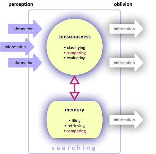 web-search-consciousness-memory