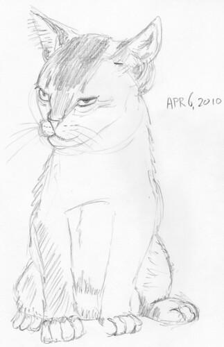 Cute kitten, drawn live on March 6, 2010