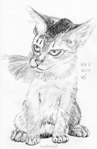 Cute kitten, drawn on April 11, 2010