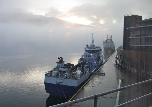 Foggy harbour