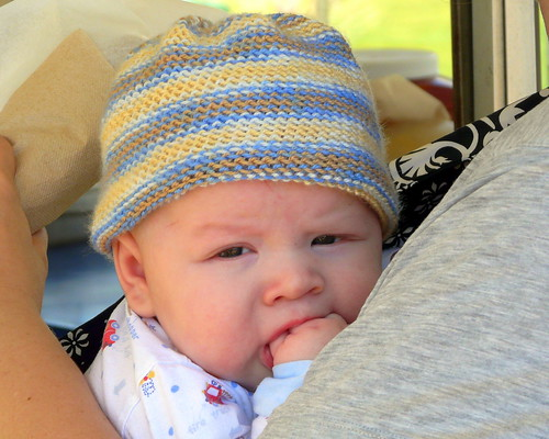Ollie likes his fist
