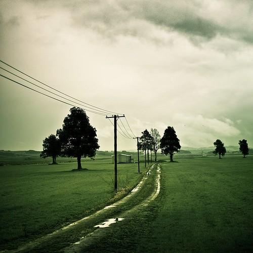 Cuba Gallery: New Zealand / rain / green / grass / landscape / trees