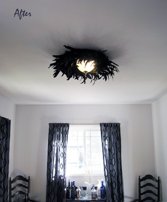 feather dining room ceiling fixture light lamp - after