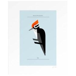 Woodpecker print Lumadessa