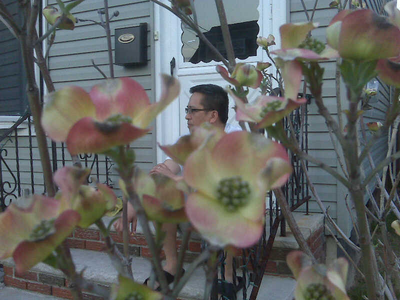 pDaddy thru the flowers