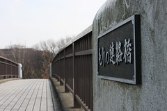 もりの連絡橋(At Shikinomori park, Japan)