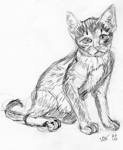 Cute kitten, drawn live on April 19, 2010