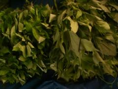 Ilocano Cuisine (Part 1) (4/6)