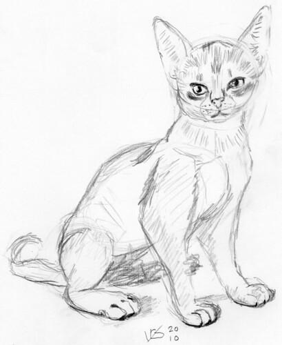 Cute kitten, drawn live on April 20, 2010