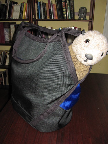 Clarence Checking Out My New Knitting Bag