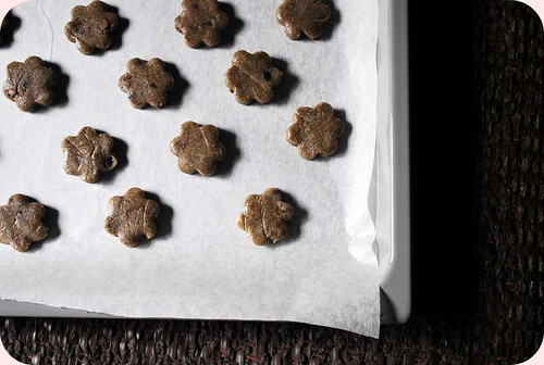 Buckwheat and Cacoa Nibs Butter Cookies III