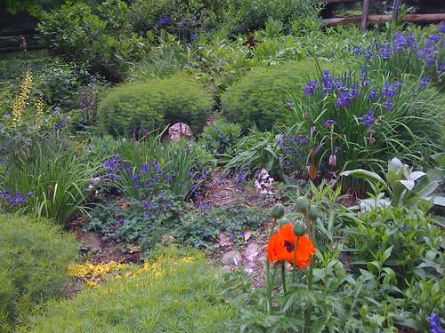 Garden at Adam's Dam