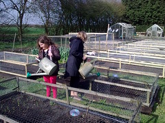 Watering the allotment 140410