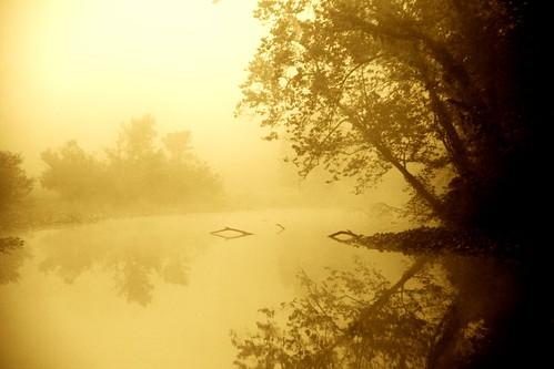 A Subtle Dawn
