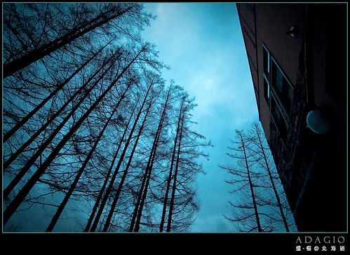 BIEI_0254.jpg