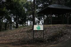 山の広場(At Shikinomori park, Japan)