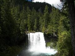 Geomorphology Field Trip: Koosah Falls