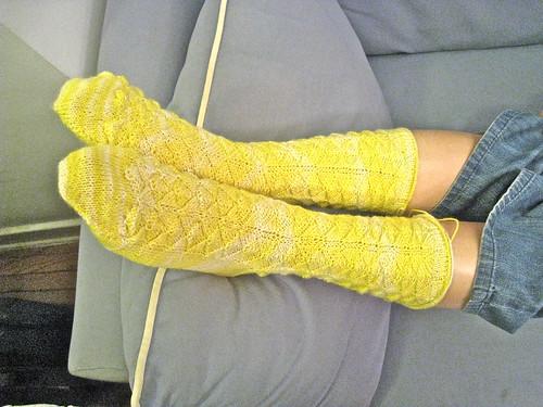 lemon drop sock