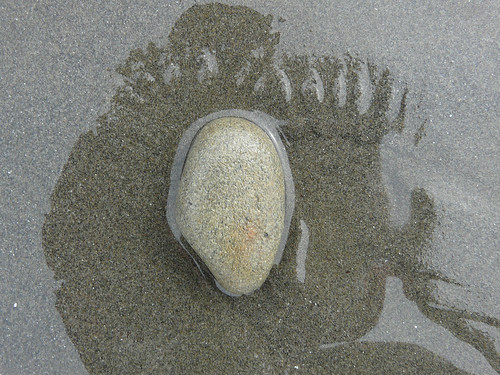 a stone in the foot