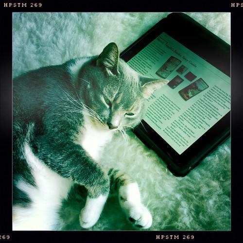 Pip and his iPad