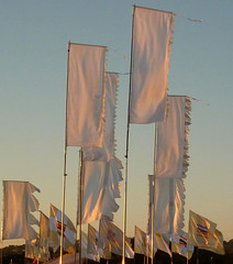 White Flags at Sunset