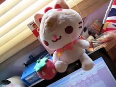 Cupcake kitty by Sugarbunny