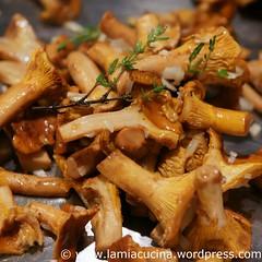 Parmesan-Gnocchi mit Pfifferlingen 0_2010 08 08_8738