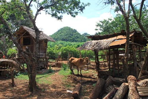 Victoria Wood visits MAG Lao IMG_1501