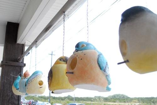 Bird bird houses.