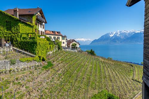 Suisse-01673